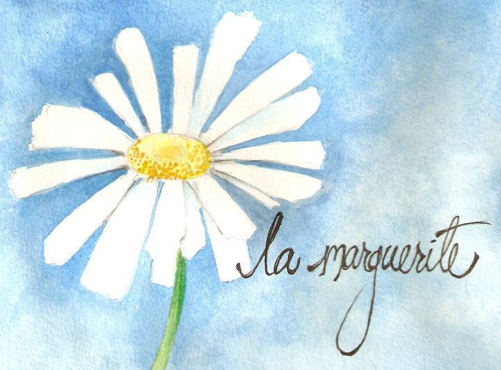La Marguerite 60 – Chambres d'hôtes